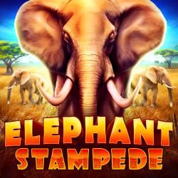 Elephant Stampade